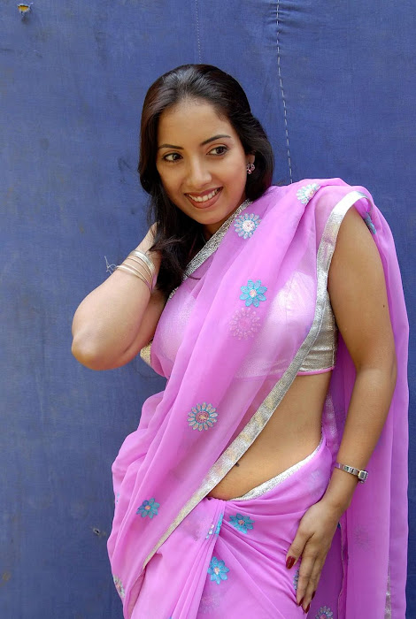 tollywood preethi mehra saree high quality photo gallery